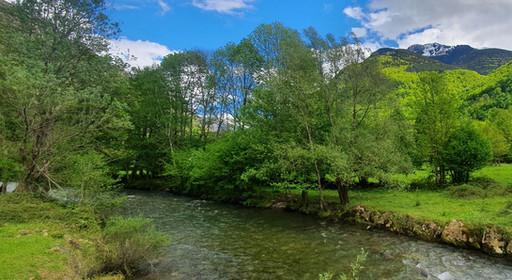 Magnifique vallée verdoyante