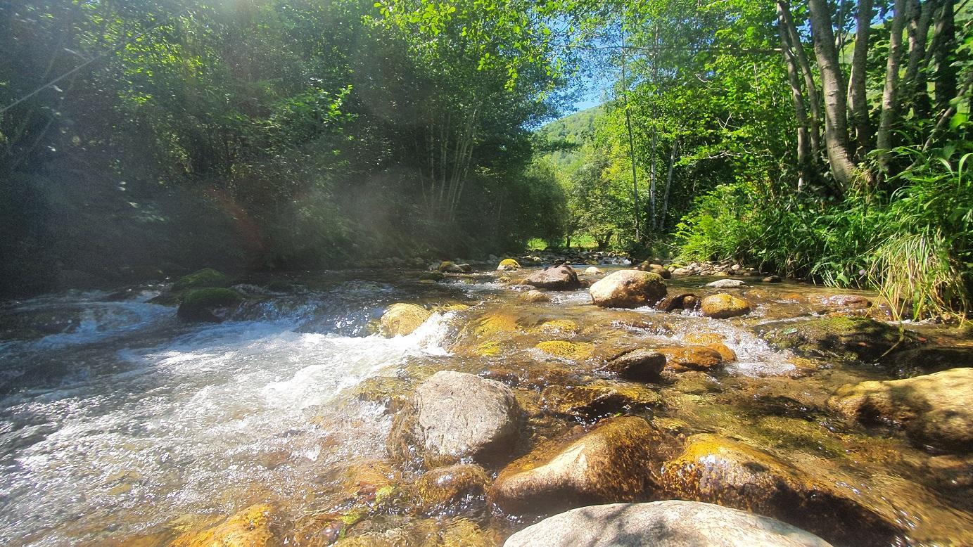 Initiation en petit cours d'eau