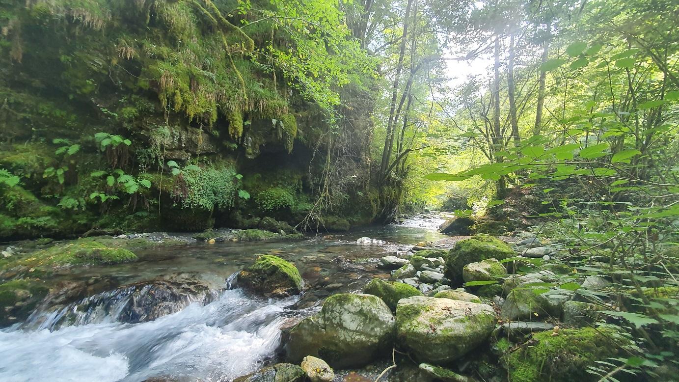 Pêche Toc à moyenne distance en petit cours d'eau sur rivière Estours
