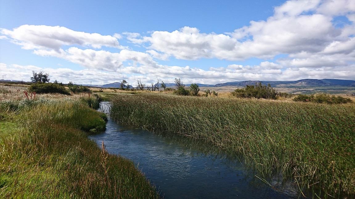 Ruisseau de plateau Chilien