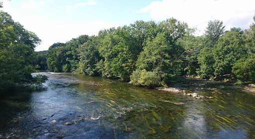 Grande rivière