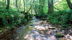 Ruisseau_Ariège