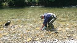 Ramasser ces larves pour pêcher avec...