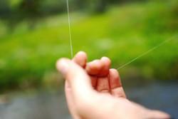 Pêche aux appats naturels