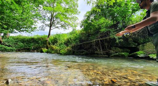 Pêche au Fouet en petite rivière de plaine