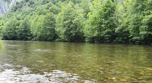 Moyenne rivière de piémont