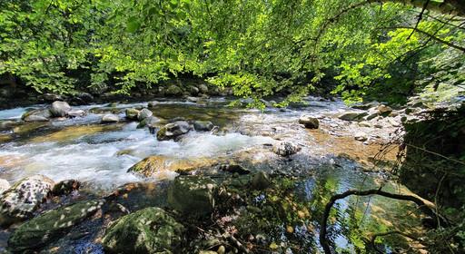 Indomptable rivière