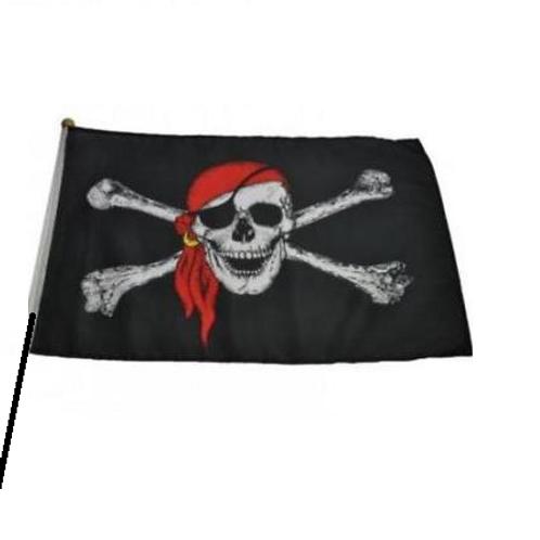 piraten vlag 60 x 90 cm met stok
