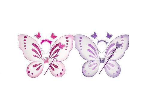 vleugels met toverstaf en tiara