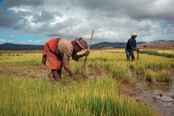 ETIOPIA & PERU'