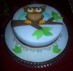 Stitched Owl Cake