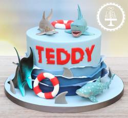 20191206 - Shark Cake