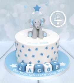 20190915 - Elephant Christening Cake