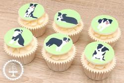 20210117 - Border Collie Dog Cupcakes