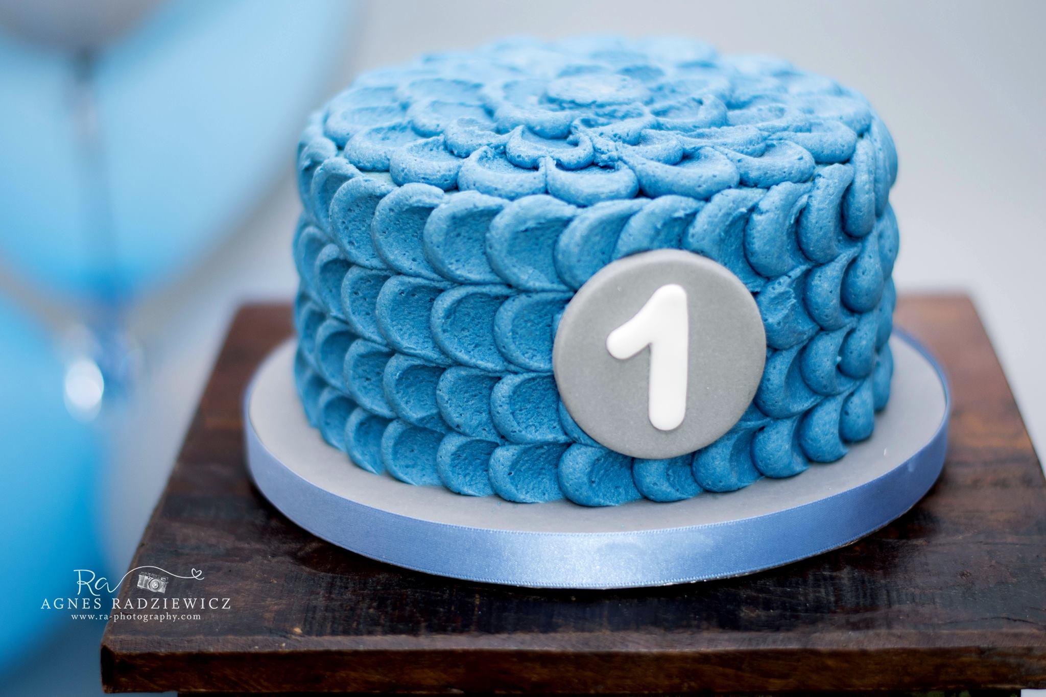 1st Birthday Cake Smash 3