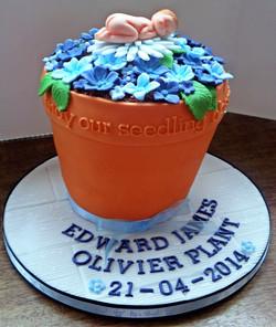 Plant Pot Baby Cake