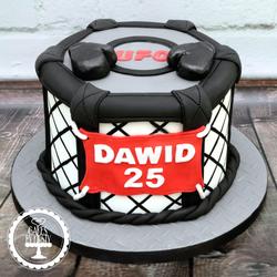 20190915 - UFC Cake