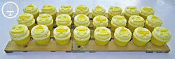 Neutral Baby Shower Cupcakes