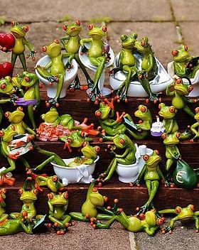 frogs-1371297__480.jpg