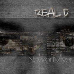 Real D - Now Or Never (Demo Version)