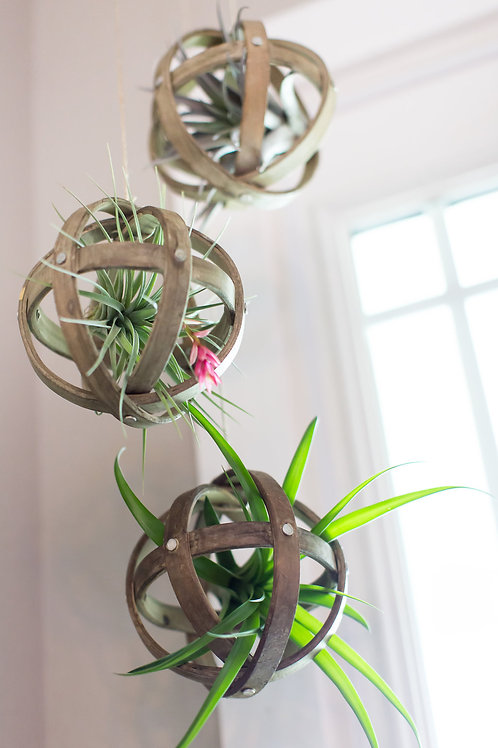 Hanging Wood Sphere Planter