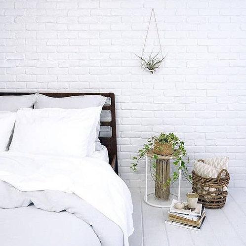 Tillandsia Cradle - White