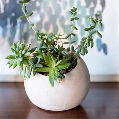 Angled Planter - Weathered Slate