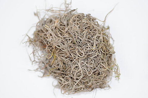 Dried Spanish Moss - Natural