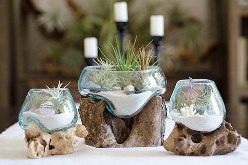 Root & Blown Glass