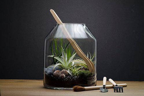 Artizan Terrarium Kit
