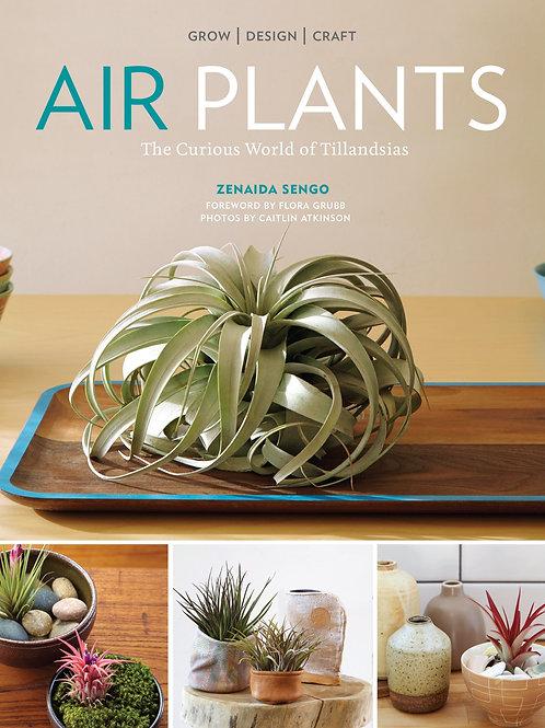 Air Plants - The Curious World of Tillandsia