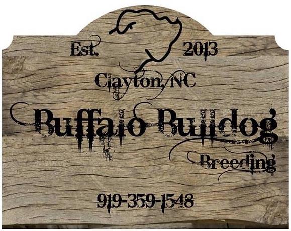 Buffalo%20Bulldogs%20Sign_edited_edited.