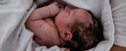 Nascimento Miguel