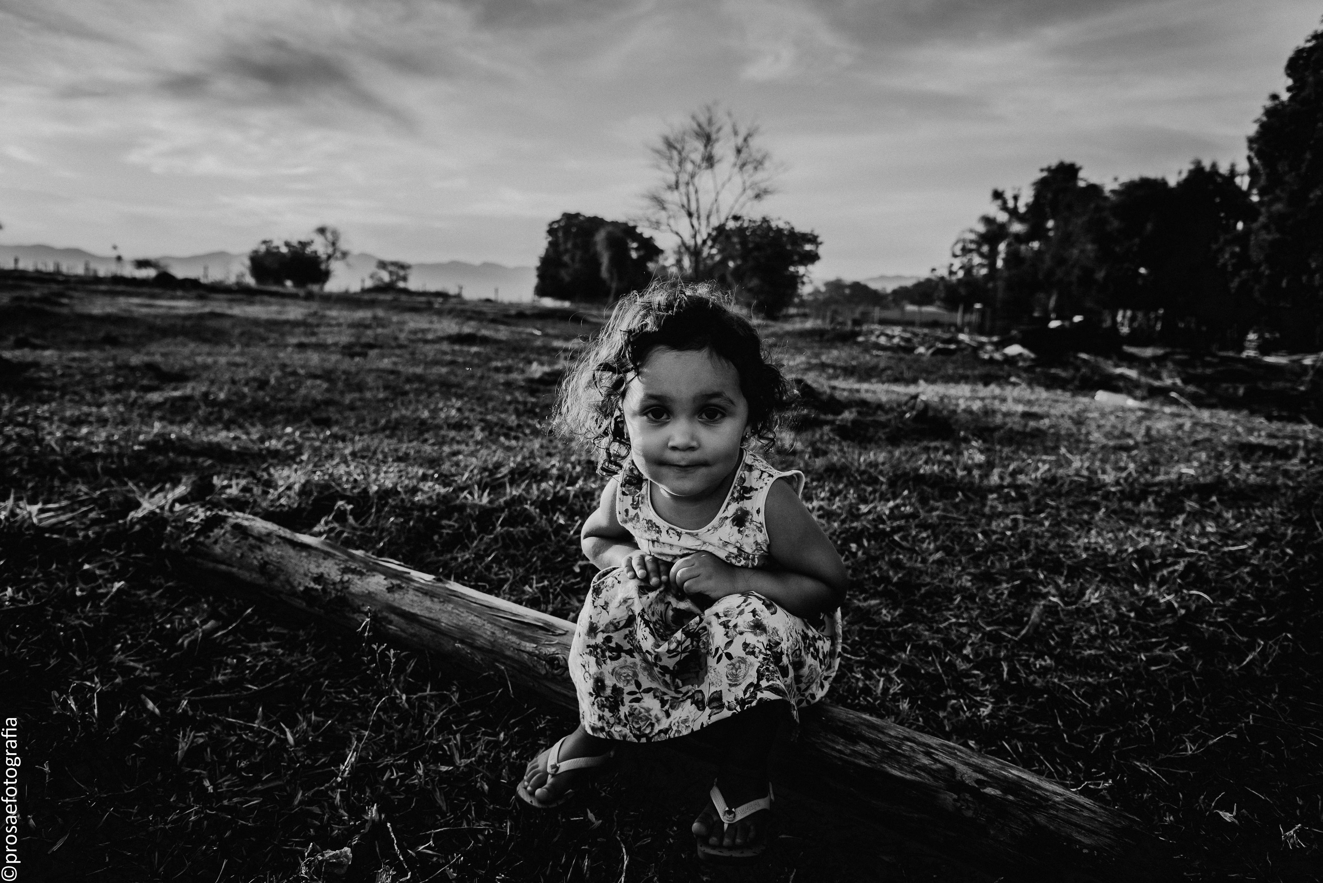 prosa_e_fotografia-5208