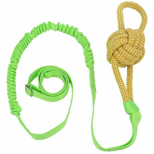 Bungee Dog Toy