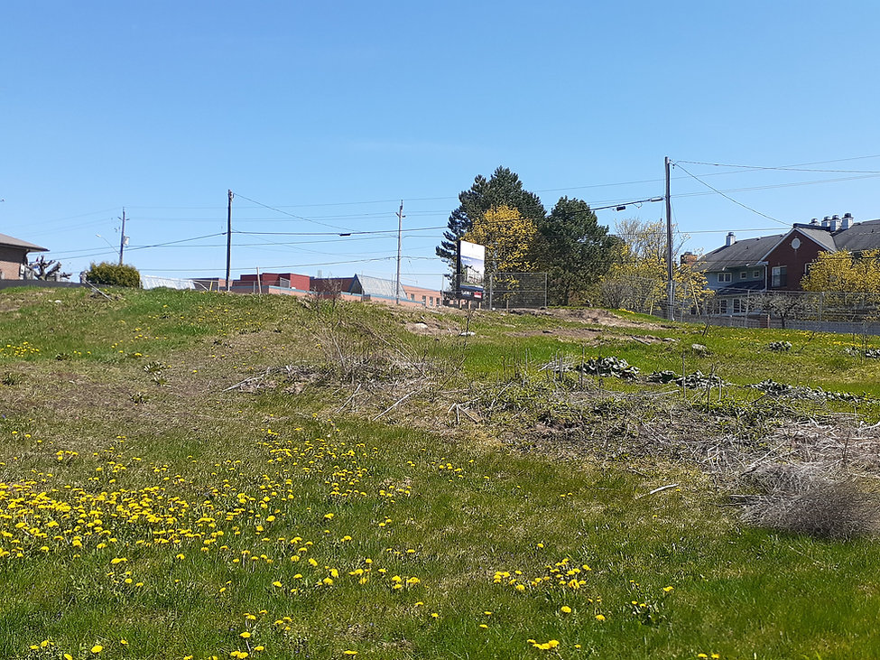 Land View With Site Sign Photo 2.jpg