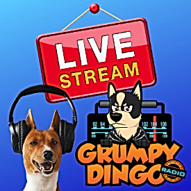 Live Stream.png