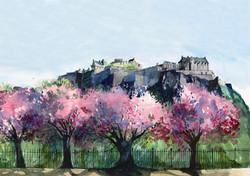 Castle in Blossom.jpg