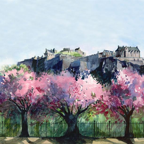 Edinburgh Castle in Blossom.jpg