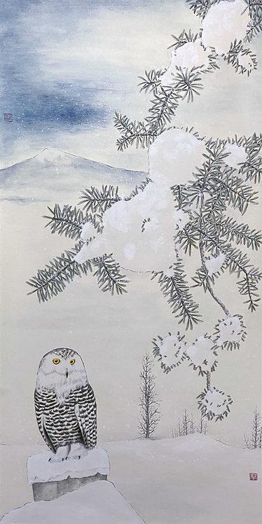 Snowy Owl in Deep Winter 隆冬下雪鶚棲息 #EL10