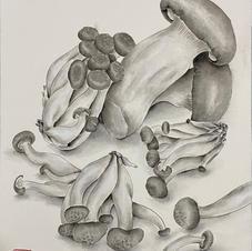 Precious Food - Mushrooms Ms. Emily LAW 2020  28 x 35 cm