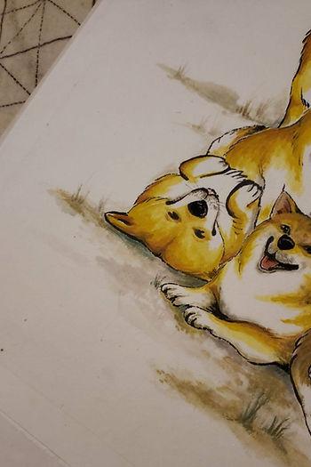 Dog_Carndy.jpg