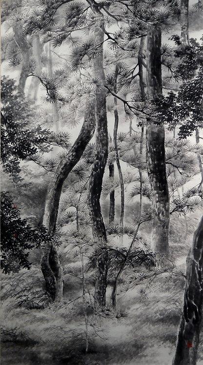 Pine Forest in Gyeongiu 松風 #MCP01