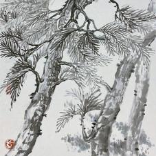 Green in Hong Kong I - A Pine Garden Ms. PAU Mo Ching  2020  34.5 x 45.5 cm