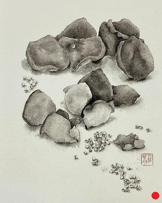 Precious Food - Dried Tangerine Peel and Barley 珍食-陳皮薏米 #EL21