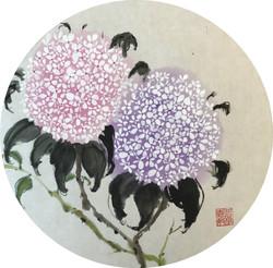 繡球花 (祝福)
