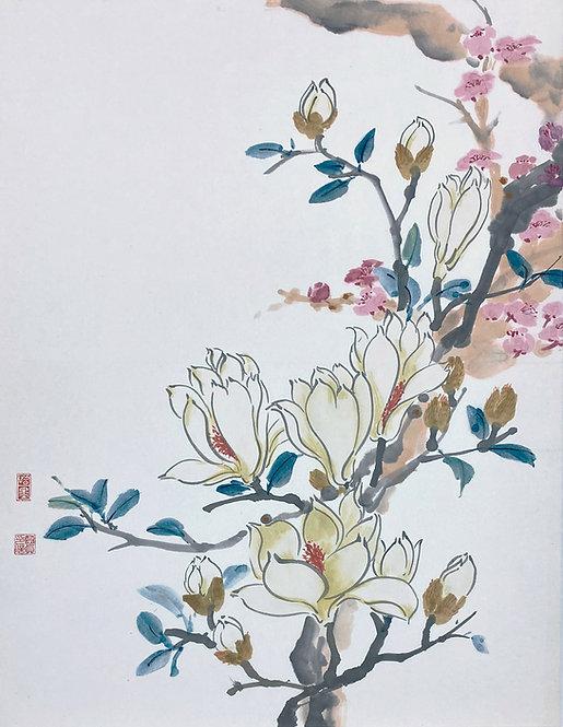 Magnolia and Peach Blossom 玉蘭桃花 #MCP08-07