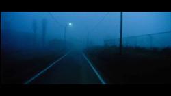 imbalsamatore foto film (39)