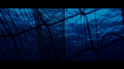 terraferma film (1)