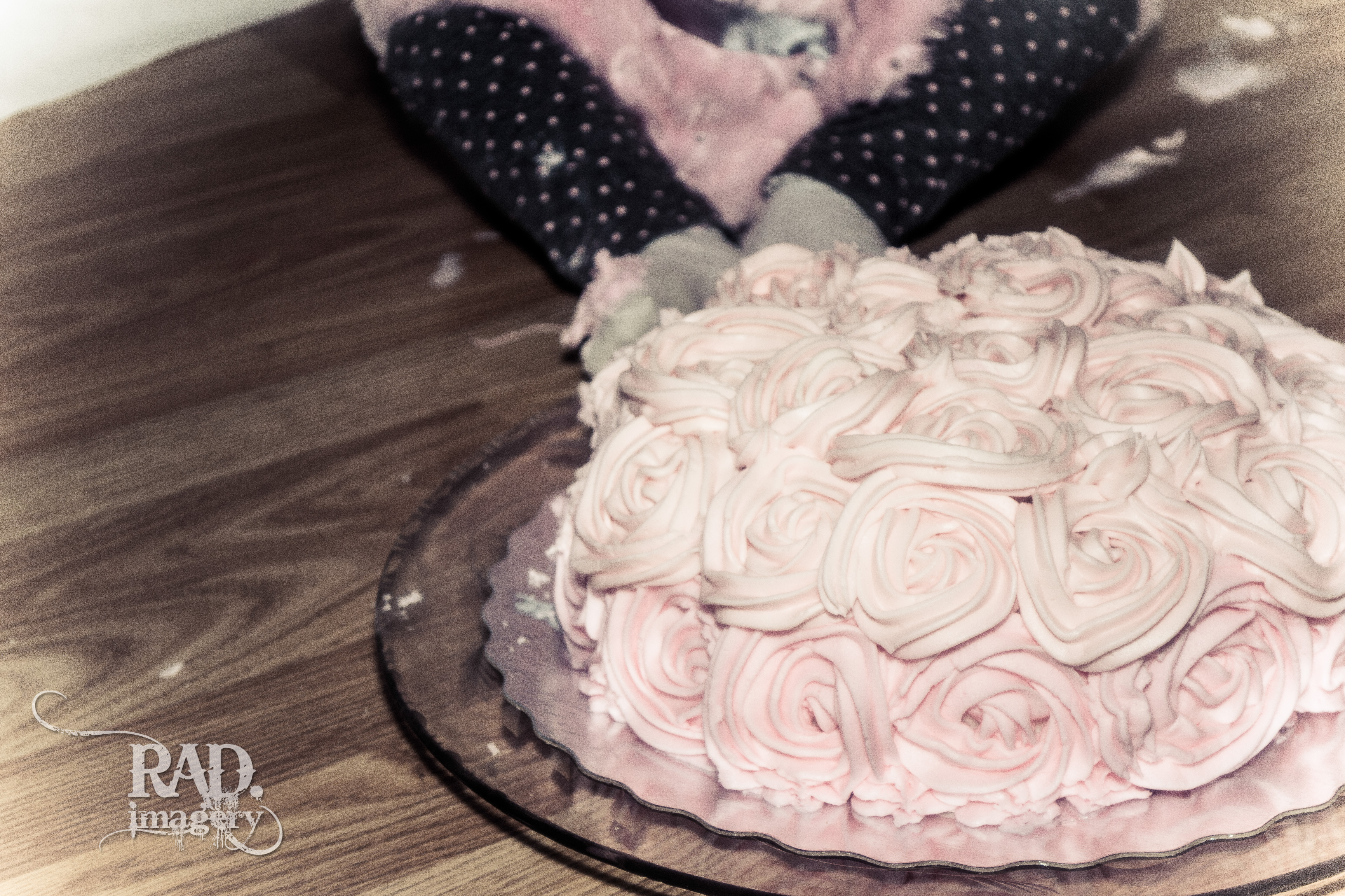 cake smash sault ste marie